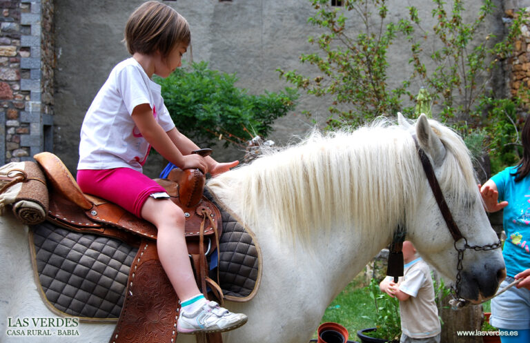 casa-rural-las-verdes-caballo-domino