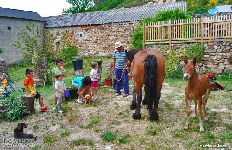 casa-rural-las-verdes-granja-escuela