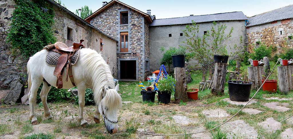 las-verdes-casa-rural-babia_caballo